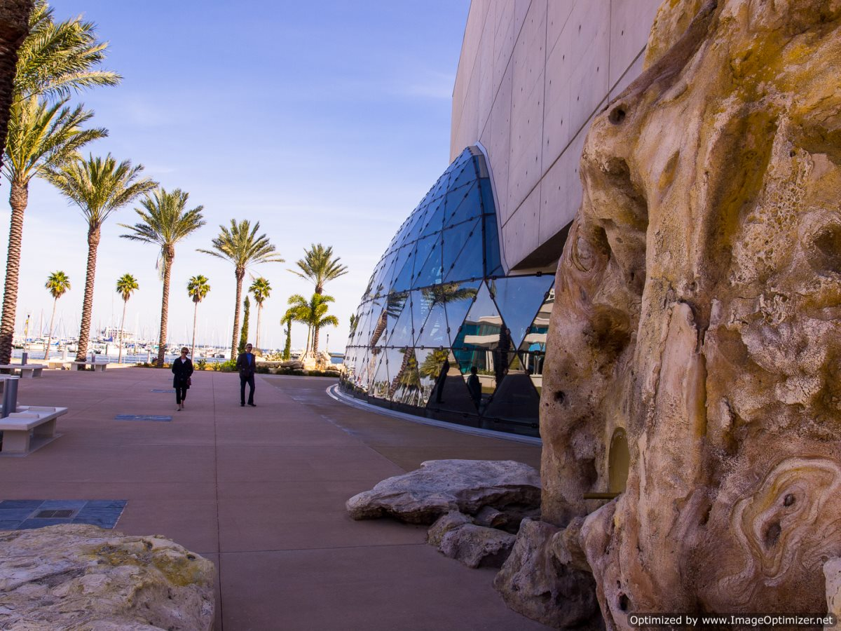 Salvador Dalí Museum Wall