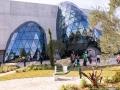 Salvador Dalí Museum Garden